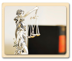 Commercial Law & Transactions Attorney